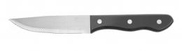 Комплект ножів для стейка 250 мм